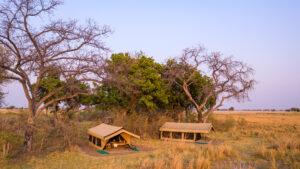 Mboma island camp safari Botswana